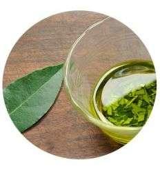 Olej Laurowy - 10ml - Maroko Produkt