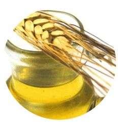 Olej z Kiełków Pszenicy - 50ml - Maroko Produkt
