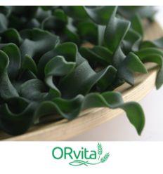 Makaron Protein Vege Spirulina Tagietelle - 400g - Orvita