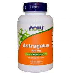 Astragalus 500mg - 100kaps - NOW