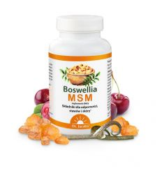 Boswellia MSM - 90 tabletek - Dr Jacobs