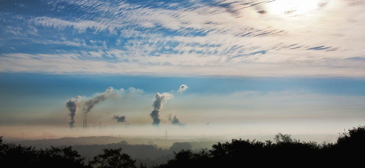 Pierwsza pomoc w walce ze smogiem