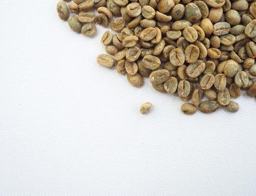 Zielona kawa i jej właściwości